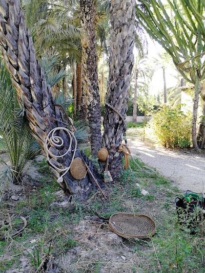 Algunos útiles del palmero
