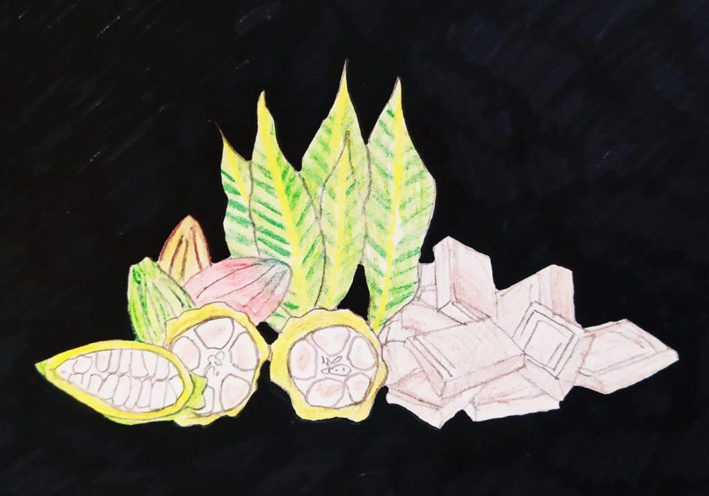 Dibujo con plantas y productos elaborados de chocolate