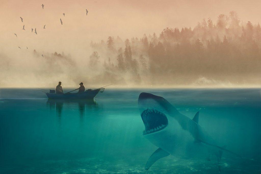Balsa acechada por un tiburón